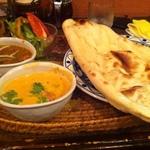 印度料理 シタール2